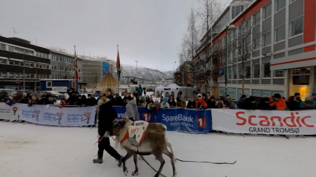 Nordic Reindeer Races