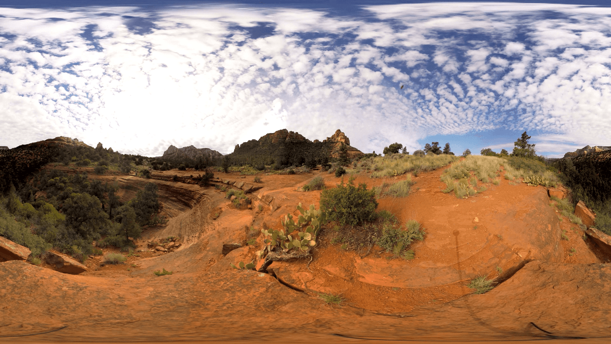 This Week on Milk VR Arizona Feature